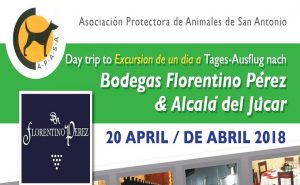 All Inclusive Day Trip to Bodigas & Alcala del Jucar with APASA @ Pick up at Mas y Mas Javea | Comunidad Valenciana | Spain