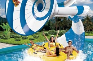 Benidorm or Aqualandia Water Park with Bus 2 @ Benidorm | Valencian Community | Spain