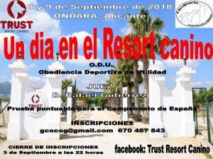 Rastro Market at Trust Resort @ Trust Resort | Ondara | Comunidad Valenciana | Spain