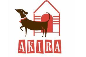 Akira Quiz @ Sociedad Recreativa Cultural, | Teulada | Comunidad Valenciana | Spain
